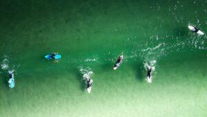 Kuvassa lainelautailijoita tyynessä meressä.